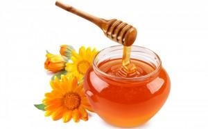 Wild Flower honey1